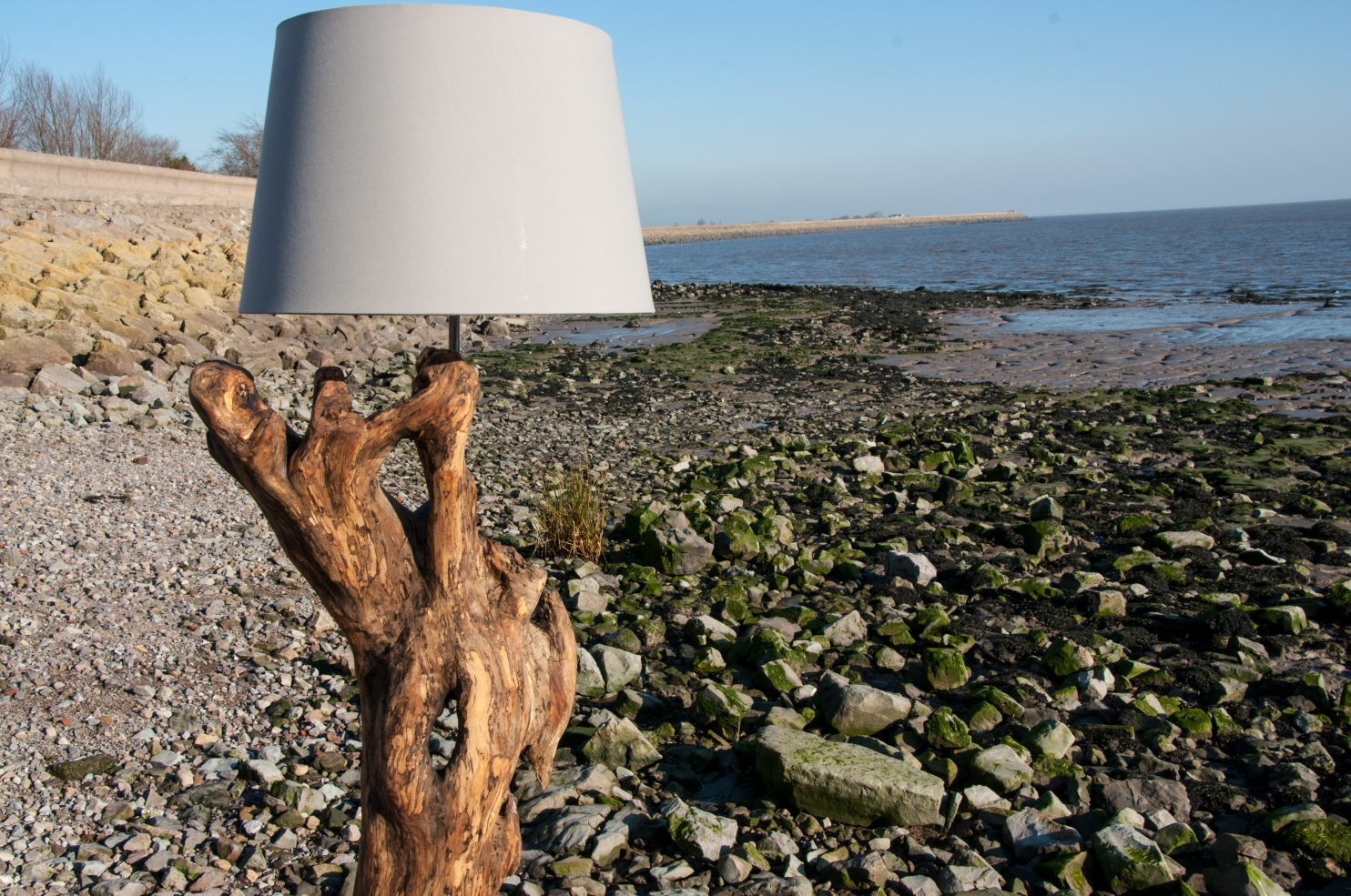 welsh-driftwood-7